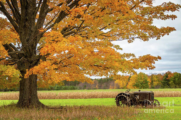 Wall Art - Photograph - Old Fall Tractor by Todd Bielby