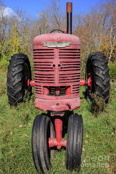 Photograph - Old Farmall Vintage Tractor Springfield Nh by Edward Fielding