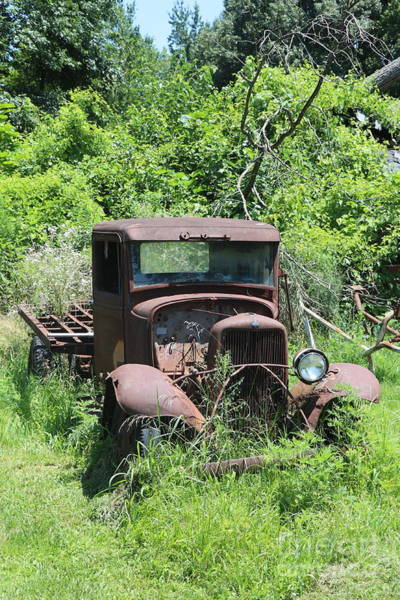Wall Art - Photograph - Old Ford Sitting In The Woods by Dwight Cook