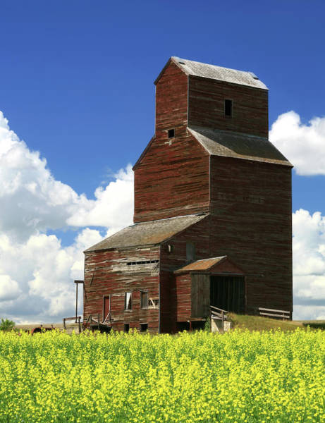 Grain Elevator Photograph - Old Grain Elevator by Imaginegolf
