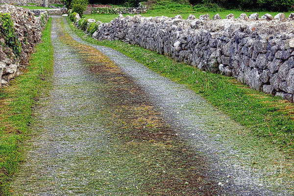 Wall Art - Photograph - Old Irish Road by Olivier Le Queinec