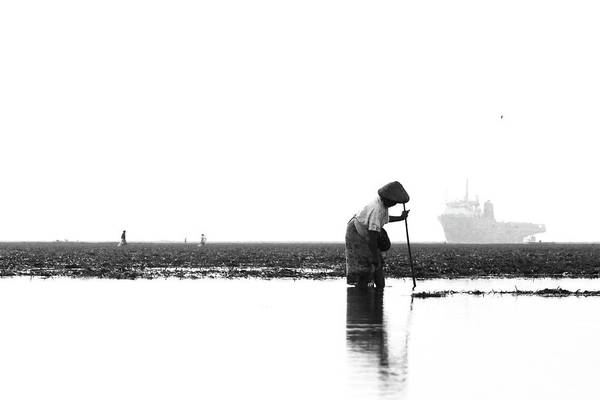Seaweed Photograph - Old Lady Collecting Seaweed by Pandu Adnyana