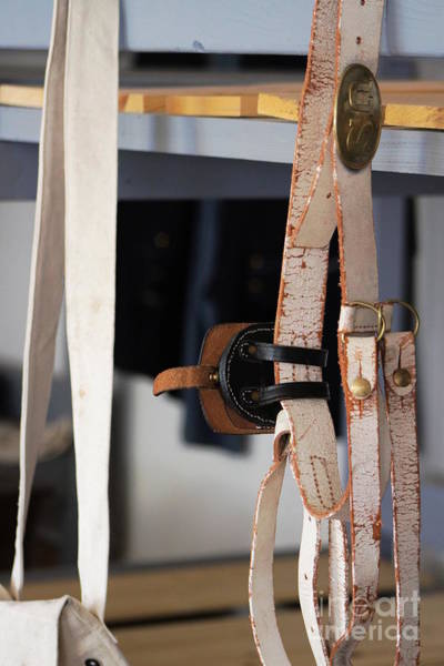 Photograph - Old Leather Belt by Colleen Cornelius