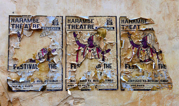 Wall Art - Photograph - Old Lion King Festival Adds by David Lee Thompson