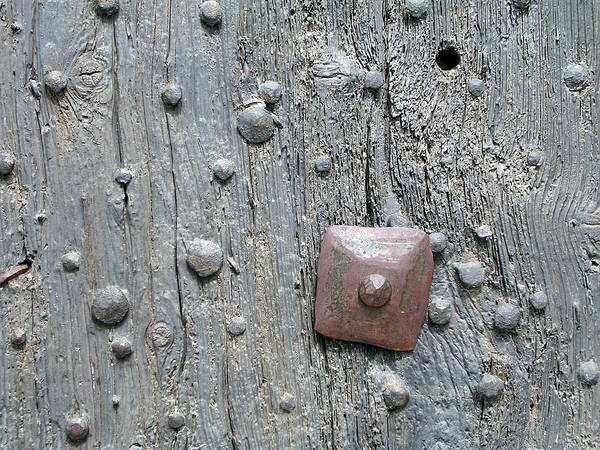 Art Object Photograph - Old Nails In A Door by Olikim