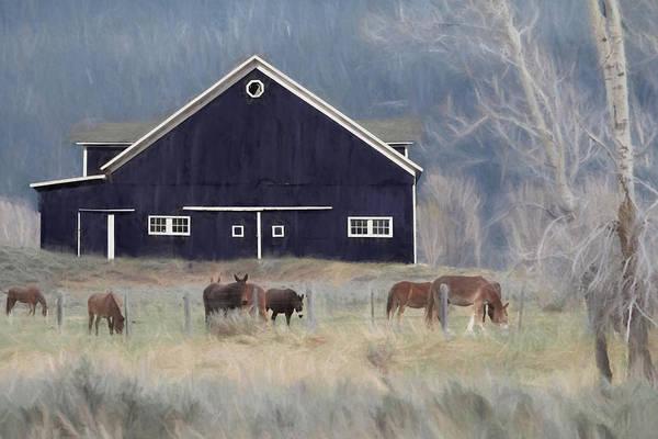 Wall Art - Mixed Media - Old Navy Horse Farm by Lori Deiter