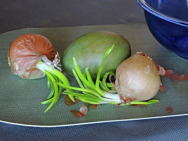 Photograph - Old Onions With Mango by Lynda Lehmann