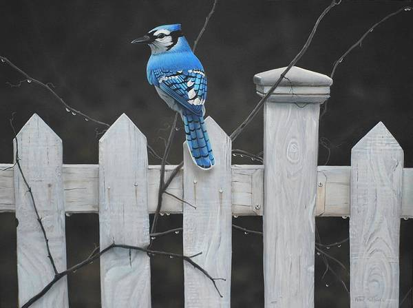 Painting - Old Picket Fence by Peter Mathios