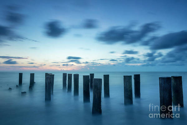 Photograph - Old Pier Pilings by Brian Jannsen