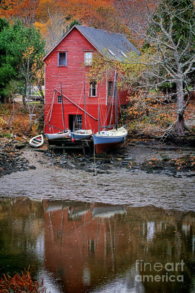 Photograph - Old Red House In Maine by Olivier Le Queinec