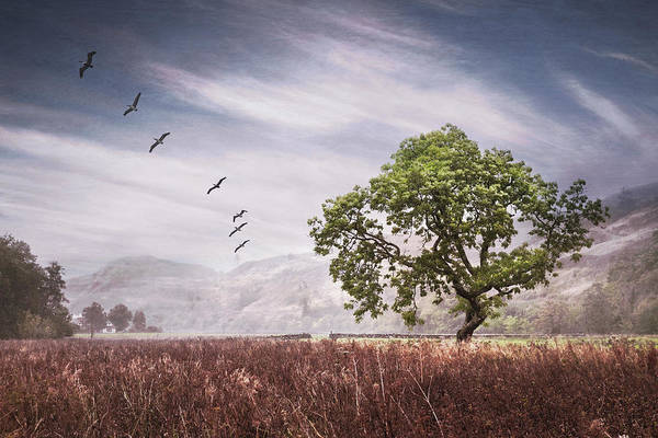 Photograph - Old Scottish Farmlands Softly Textured by Debra and Dave Vanderlaan