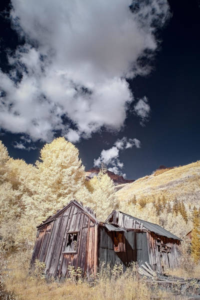 Photograph - Old Shack In Colorado  by Jon Glaser
