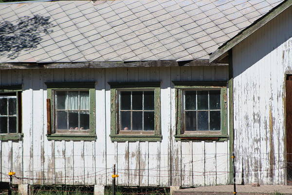 Photograph - Old Shed And Barbed Wire Fort Stanton New Mexico by Colleen Cornelius