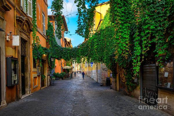 Small Wall Art - Photograph - Old Street At In Trastevere, Rome by Catarina Belova
