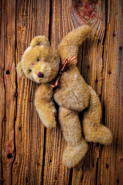 Wall Art - Photograph - Old Teddy Bear Hanging On The Door by Garry Gay