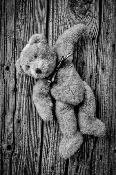 Wall Art - Photograph - Old Teddy Bear Hanging On The Door In Black And White by Garry Gay