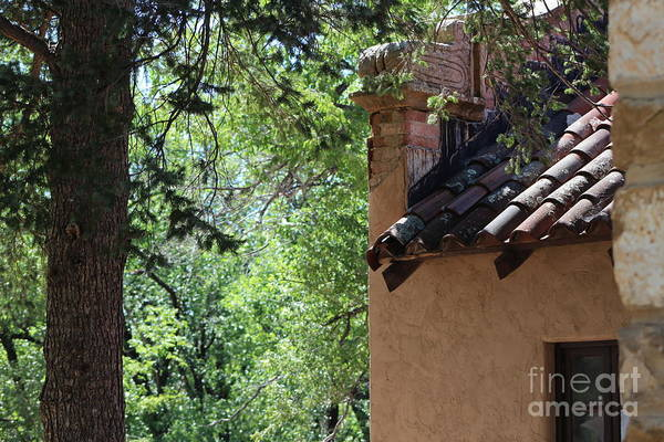 Photograph - Old Terracotta Roof With Lichen At Fort Stanton New Mexico by Colleen Cornelius