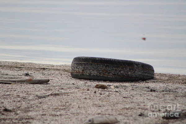 Photograph - Old Tire On Shore Of Salton Sea by Colleen Cornelius