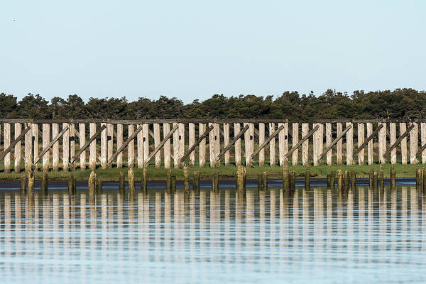 Photograph - Old Trestles by Robert Potts