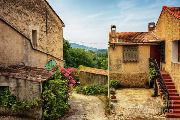Photograph - old village near La Castelet by Ariadna De Raadt