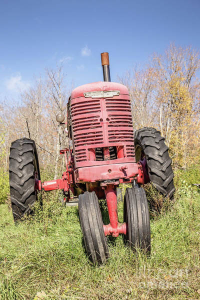Photograph - Old Vintage Farm Tractor Warm Color by Edward Fielding