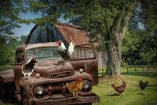 Photograph - Old Vintage Ford Truck With Free Range Chickens On On A West Mich by Randall Nyhof