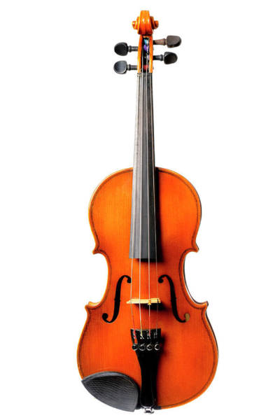 Art Object Photograph - Old Violin On White by Sjo