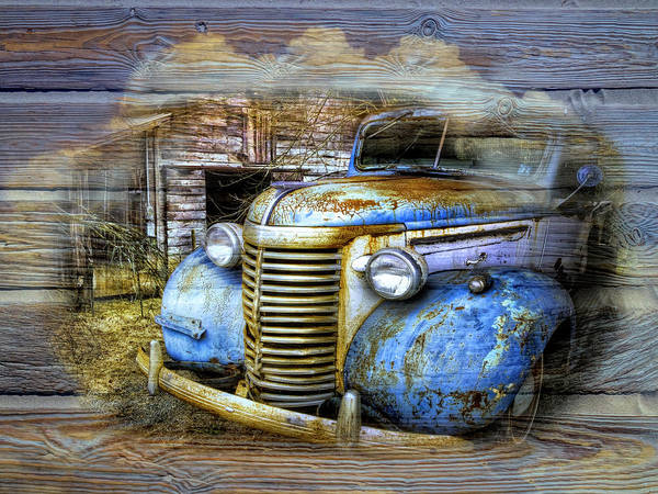 Wall Art - Photograph - Oldster by Debra and Dave Vanderlaan