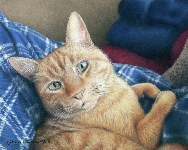 Orange Tabby Drawing - Olin by Katherine Plumer