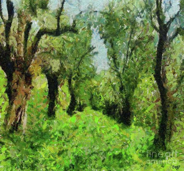 Wall Art - Painting - Olive Grove In The Early Spring by Dragica Micki Fortuna