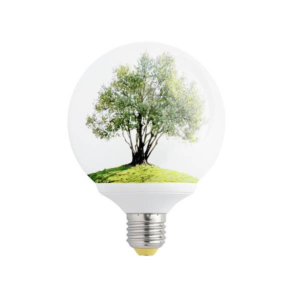 Olive Branch Digital Art - Olive Tree In Light Bulb. by Rudy Bagozzi