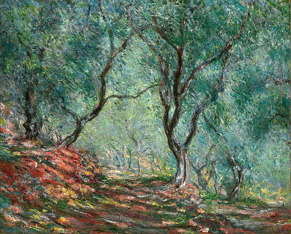 Wall Art - Painting - Olive Tree Wood In The Moreno Garden, 1884 by Claude Monet