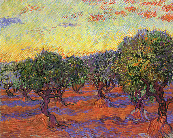 Painting - Olive Trees Orange Sky  by Vincent van Gogh