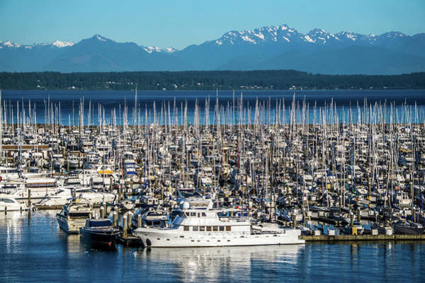 Photograph - Olympic Mountains And Boat Marina In Puget Sound Washington Stat by Alex Grichenko