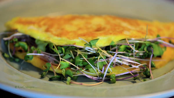 Photograph - Omelette With Sprouts by Kae Cheatham