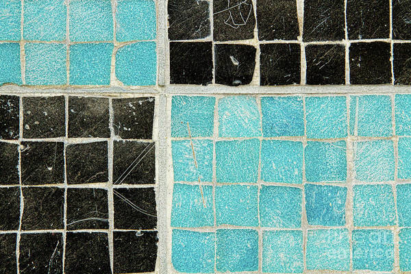 Photograph - On A Theme Of Turquoise And Black by Marilyn Cornwell