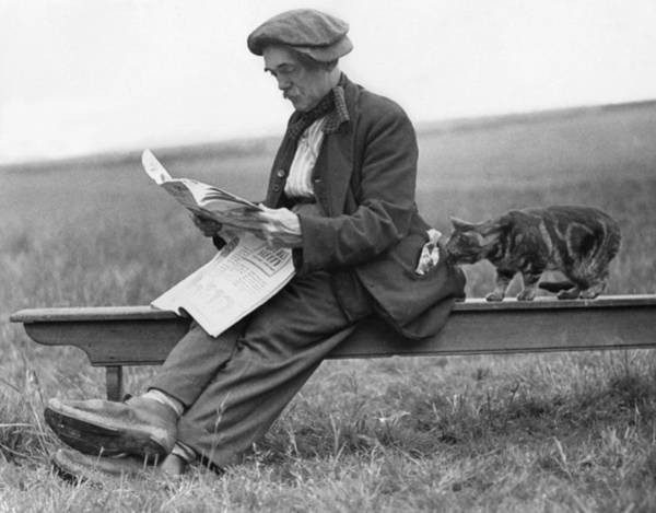 Newspaper Photograph - On Bench With Cat by Hulton Collection