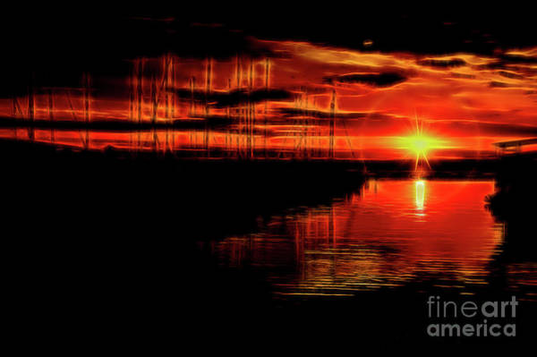 Photograph - On Fire by Diana Mary Sharpton