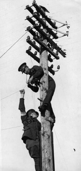 Telephone Photograph - On Telegraph Pole by Fox Photos