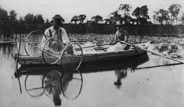 Cage Photograph - On The Broads by Hulton Archive