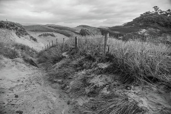 Photograph - On The Dunes by Kristopher Schoenleber