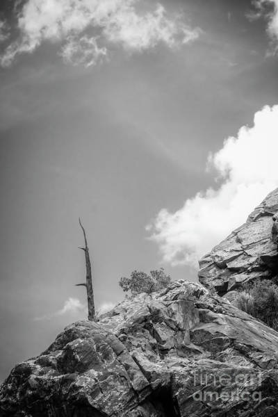 Photograph - On The Edge by Imagery by Charly