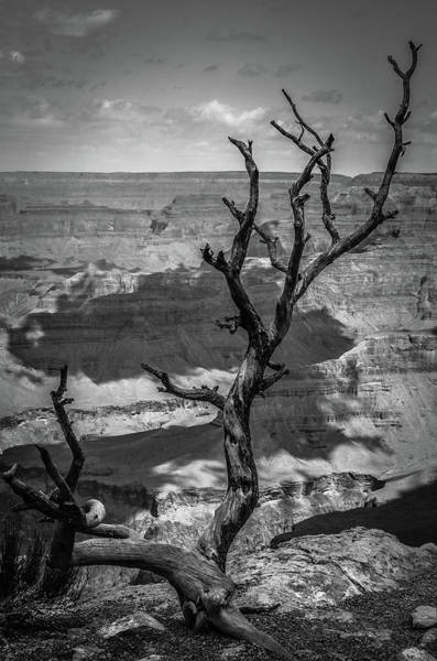 Photograph - On The Edge Of The Grand Canyon Bw by RicardMN Photography