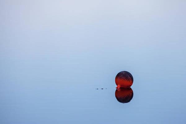 Photograph - On The Lake by Barbara Friedman