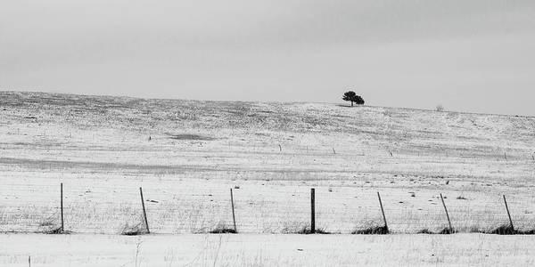 Photograph - On The Ridge by Dan Urban