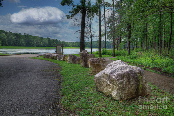 Wall Art - Photograph - On The Rocks by Larry Braun