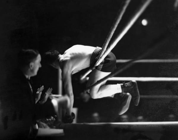 Photograph - On The Ropes by David Savill