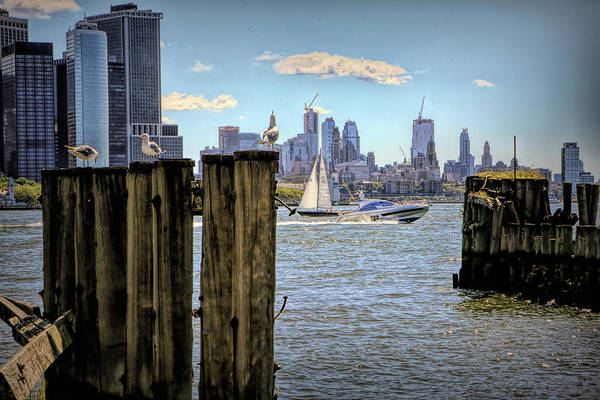 Wall Art - Photograph - On The Waterfront by Geraldine Scull