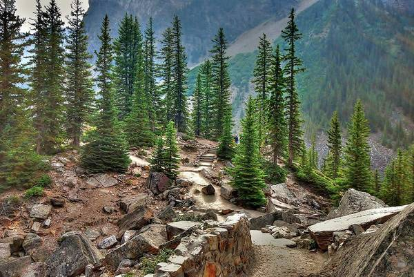 Wall Art - Photograph - On Top Of The Rockpile At Lake Moraine by Rex Montalban Photography