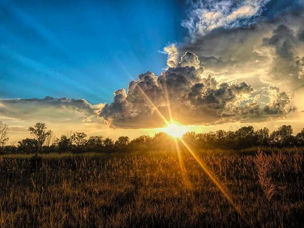 Photograph - One Last Moment Of Brilliance by Jack Wilson